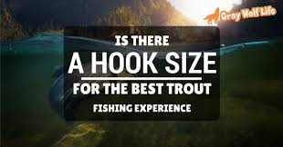 Is There A Hook Size For The Best Trout Fishing Experience