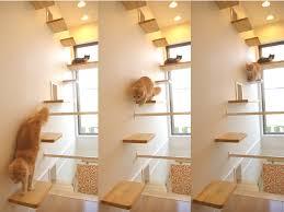 multi shelves indoor cat house