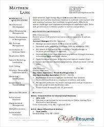 30+ Printable Sales Resume Templates - Pdf, Doc | Free & Premium ...
