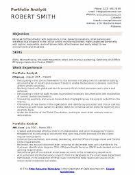 Microsoft Excel Resume Template Portfolio Analyst Resume Samples Qwikresume