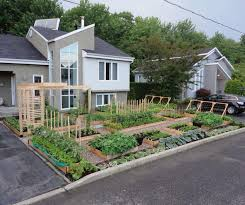 Small Picture 28 best Vegetabulls Vegetable Garden images on Pinterest Edible