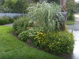 Small Picture mailbox garden end of summer ornamental grass to cover crooked
