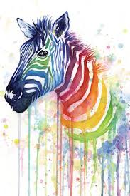 rainbow zebra by olga shvartsur print painting on wrapped canvas