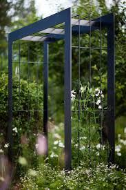 Simple Pergola best 25 metal pergola ideas pergola ideas 6236 by xevi.us