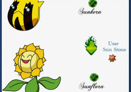 40 All Inclusive Pokemon Trapinch Evolution Chart