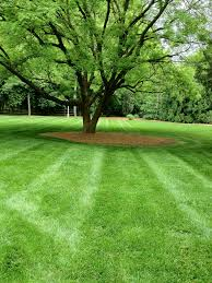 Small Picture Garden Design Garden Design with Cutting Edge Lawn Services uamp