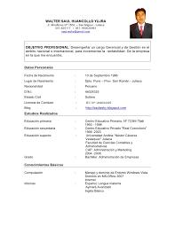 Dorable Formato Curriculum Vitae Filetype Doc Gallery Example