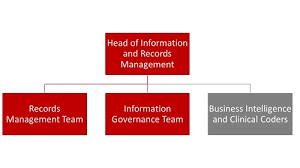 Isle Of Man Government Records And Information Governance