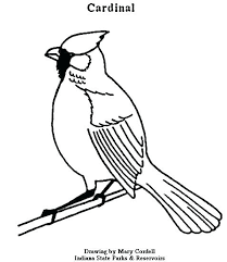 Cardinals Coloring Pages Cardinal Coloring Page Coloring Pages