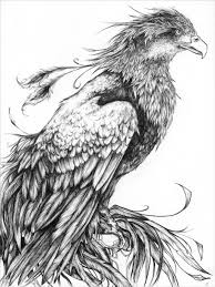 Drawn Phoenix Pinterest Free Clipart On Dumielauxepices Net