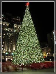 A Christmas Lights, Etc artificial tree, like this one in San Francisco,  will.