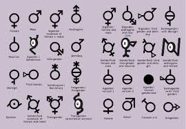 Different Genders Chart A Chart Of All The Genders Teenagers