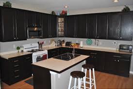 dark stained kitchen cabinets. Stained Kitchen Cabinets Dark I
