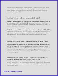 The Perfect Resume Template Mesmerizing The Perfect Resume Template Classy Computer Science R Superb Resume