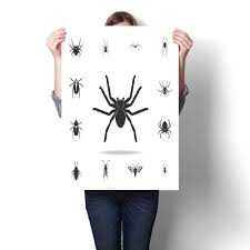 Tarantula Web Design Amazon Com Longbuyer Canvas Wall Art Spider Tarantula