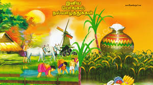 pongal greetings in english and tamil tamil kavithaigal pongal festival dance