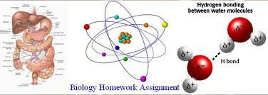 pay someone to do biology assignment homework help biology assignment help