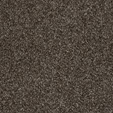 home decorators collection wholehearted ii color mocha ice twist
