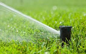 garden irrigation nj. Garden Irrigation Nj