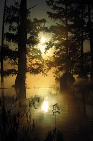 Starkville Water And Light Bluff Lake Mississippi United States Roger Smith