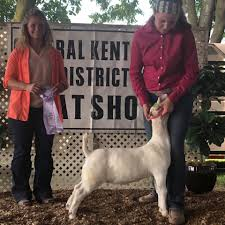 Jeffries Farms - Congrats Avery Holman Reserve Overall... | Facebook