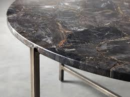 ludlow petrified wood coffee table
