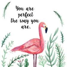 Beautiful Flamingo Quotes Best Of Pin By Sherrill Hunter Woody On Flamingoes Pinterest Flamingo