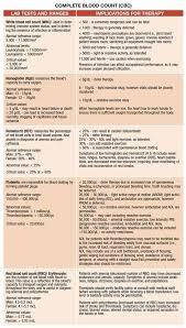 essay topics names science grade 12