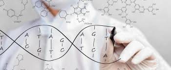 Genome Editing We Need To Talk About Cut And Paste Genome Editing Warns Pioneer