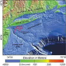 Bottom Composition Marine Biology New Jersey Scuba Diving