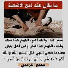 تفاصيل24 - هذا ما يقال عند ذبح الأضحية، ماشي: بسم الله الله أكبر شد ديلمو  مزيان.