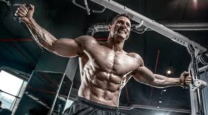 shredded body work out plan to do at