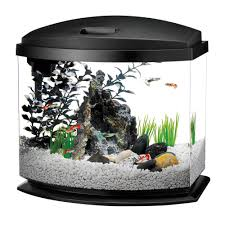 office desk fish tank. More Options Available Office Desk Fish Tank