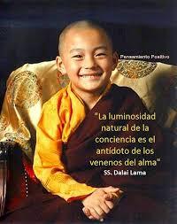 frases dalai lama meditacion - Buscar con Google | Frases inspiradoras,  Pensamientos