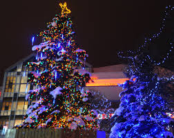 Christmas Tree Lighting Anchorage Christmas Tree Animated Lights Capped By A Star Cold We