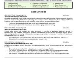 Best Example Of Resume Format Or Sales Executive Resume Sample Doc