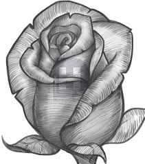 Small Picture How to Draw a Rose Bud Rose Bud by Darkonator DrawingHub
