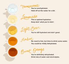 Red Orange Colour Chart Hydration Chart Learn To Read The Shades Of Your Pee