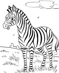 Small Picture Zebra Happy Zebra Coloring Page Cartoon Zebra Coloring Page