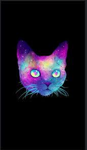 cute iphone wallpapers tumblr hd. Wonderful Iphone Cat IPhone Wallpaper Tumblr To Cute Iphone Wallpapers Tumblr Hd