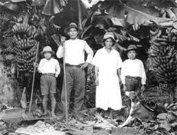 「トメアス 入植者 当時」の画像検索結果