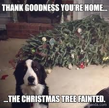 Image result for christmas meme