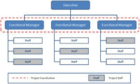types of management skills organizational structure types for project managers