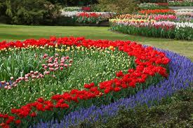 Small Picture Flower Garden Planning pueblosinfronterasus