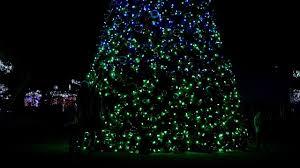 Largo Central Park Christmas Lights 2018 Largo Central Park Holiday Lights