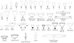 Par Bulb Chart Regular Light Bulb Size Knockit Co