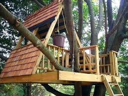 Image Treehouse Masters Pinterest Kids Tree House Plans Decoration For Birthday Party With New