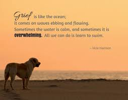 Loss Of A Pet Quotes Extraordinary Losing A Dog Quotes Alluring 48 Comforting Loss Of A Pet Quotes
