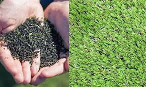 artificial turf field. Crumb Rubber Pellets Recovered From An Artificial Turf Field, Left, And Nike Grind Bits, Nestled Among Fake Blades Of Grass, At Right. Field