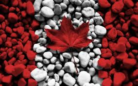 Image result for canada day image
